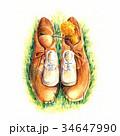 大きな靴と小さな靴 34647990