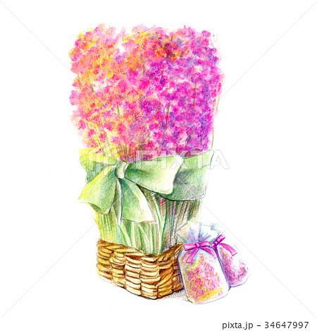 ポプリの花束 34647997