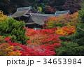 談山神社 紅葉 神社の写真 34653984