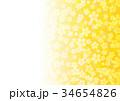 花 和柄 梅のイラスト 34654826