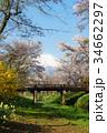 忍野村 春 富士山の写真 34662297