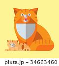 ベクトル ねこ ネコのイラスト 34663460