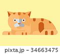 ベクトル ねこ ネコのイラスト 34663475
