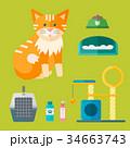 ベクトル ねこ ネコのイラスト 34663743