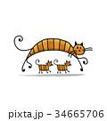 ねこ ネコ 猫のイラスト 34665706