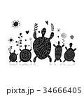 かめ カメ 亀のイラスト 34666405
