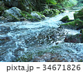 円原川 伏流水 川の写真 34671826