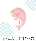 ベクター 鯛 魚のイラスト 34674473