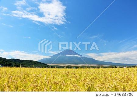 富士山と秋の田んぼ 34683706