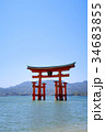安芸の宮島 宮島 厳島神社の写真 34683855
