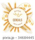 むぎ ムギ 小麦のイラスト 34684445