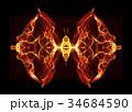 チョウ 蝶 火のイラスト 34684590