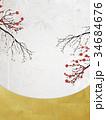和を感じるイラスト(梅の花、紅白、竹) 34684676