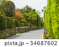 知覧 武家屋敷通り 小路の写真 34687602