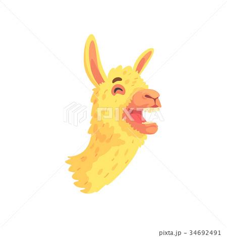 Funny laughing llama character, cute alpaca animal 34692491
