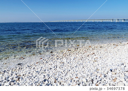 マーブルビーチ・りんくう公園 34697378