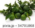 果物 柑橘類 フルーツの写真 34701868