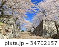 津山城 城 桜の写真 34702157
