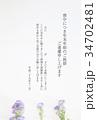 喪中ハガキ(孔雀草) 34702481