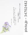 喪中ハガキ(孔雀草) 34702482