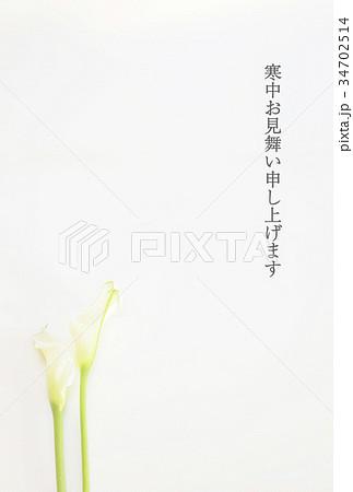 寒中見舞いハガキ(カラーの花) 34702514