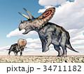 恐竜 草食獣 立体のイラスト 34711182