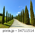 Road on hill with cypress trees in Tuscany 34711514