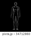 肝臓 内臓 男性のイラスト 34712860