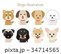 犬のイラストセット 34714565
