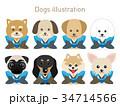 犬のイラストセット(お正月Ver) 34714566