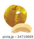 水彩画|秋の味覚のイラスト 梨|Pears illustration 34719669