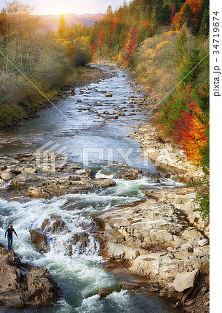 Autumn creek woods with colorfull trees foliage 34719674