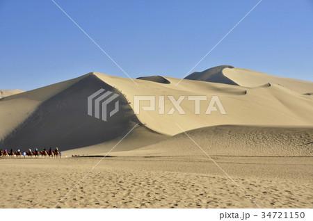 砂漠を行くラクダ 34721150