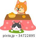 こたつに入る犬と猫 34722895