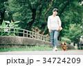 犬の散歩をするミドル女性 34724209