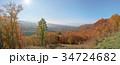 紅葉 自然 風景の写真 34724682