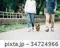 犬の散歩をする日本人夫婦 34724966