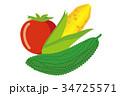 アイコン ベクターデータ ベクターのイラスト 34725571