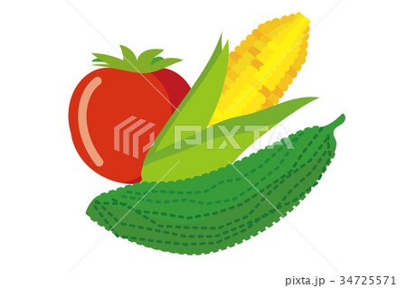 夏野菜のイラスト ゴーヤ トマト ゴーヤ|ベクターデータ|summer vegetables 34725571