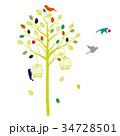 木と鳥のシルエット エンジョイ 34728501