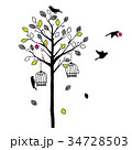 木と鳥のシルエット ビビット 34728503