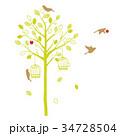 木と鳥のシルエット ナチュラル 34728504