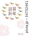 戌年 犬の年賀状イラスト 34732461