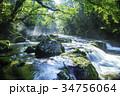 美しい新緑の菊池渓谷 34756064