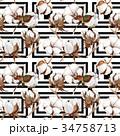 花 野草 水彩画のイラスト 34758713