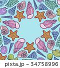 フレーム 貝 貝がらのイラスト 34758996