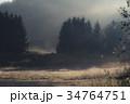 朝日 早朝 自然の写真 34764751