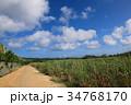 南大東島 一本道 雲の写真 34768170