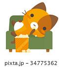 ネコとーく。三毛猫+ソファ 34775362