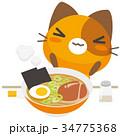 猫 三毛猫 ラーメンのイラスト 34775368